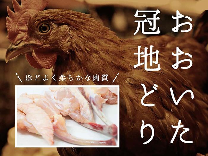 おおいた冠地鶏